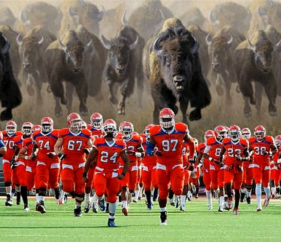 Sam Houston Having Nightmares About Bison