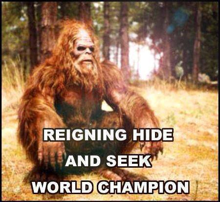 big foot hide and seek champion