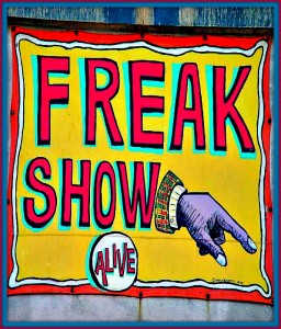 Come see the Freak Show for some indelible memories