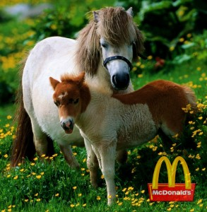 McDonald's new McHorse and McPony sandwiches