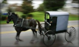 Drive your very own Amish Cruiser.