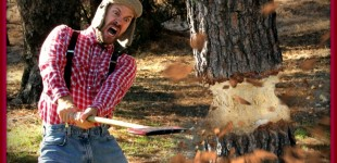 Lumberjack Union Working With CDC To Stop Treebola