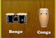 Moorhead Starting A Community Bongo Band