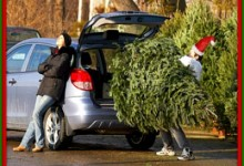 Tax On Christmas Trees To Go Directly To Obama Retirement Fund