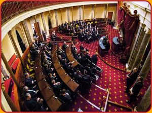U.S. Senate only spends time debating impotent issues.