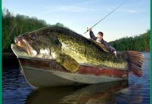 Moorhead Man Lands Record Large-Mouth Bass From Long Lake