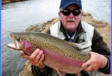 Fisherman Catches Rainbow Trout On Internet Using Clickbait
