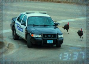 Moorhead Police give thanks for Turkey Police assistance.