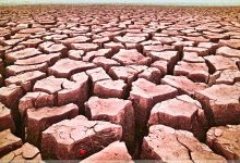 Area Drought Being Blamed On Dry Conditions And 'Global Drying'