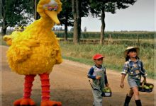 Big Bird Dead At The Age Of Seventy