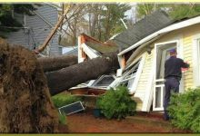 Tree Toppled By Storm's Strong Winds Damages Home Which Owner Fixes Using Only Duct Tape
