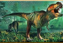Dinosaur Dig In Fargo's Island Park Drawing National Attention