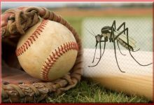 Baseball-Sized Mosquitoes Now Fargo's Second Pandemic