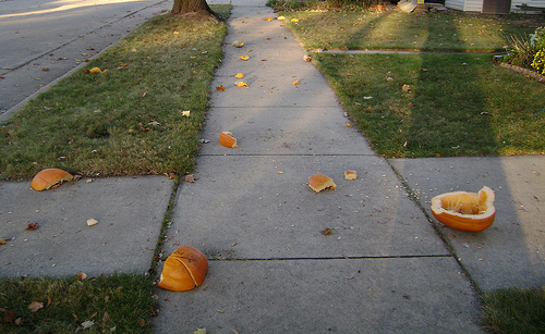 Man Caught Having 'Sexy Time' With Area Pumpkins