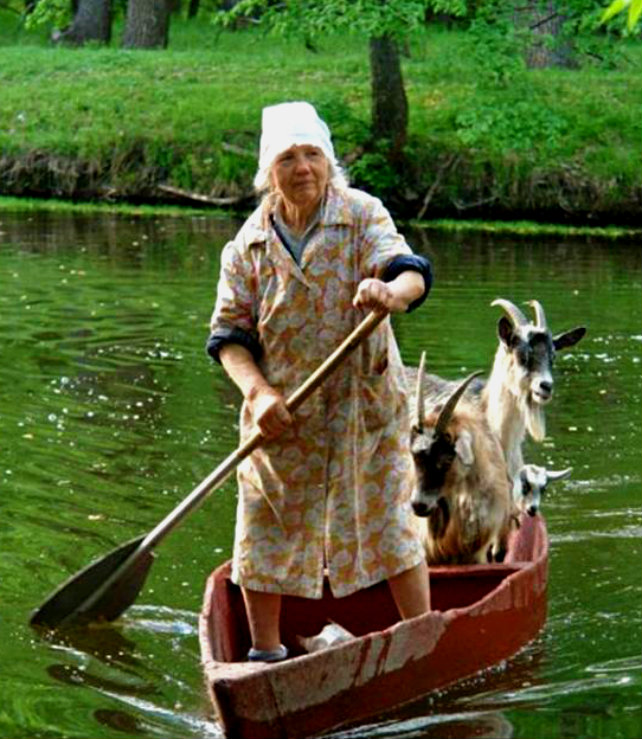 Goat-Boat Woman To Challenge The Mississippi