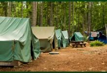 FM Observer Announces Summer Camp 4 New Observers
