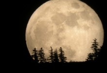 If You Missed The Supermoon, Here Are Some Pics.