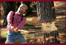 April 30 Is National Chop-Down-Your-Neighbor's-Tree Day