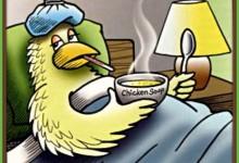 How To Tell If A Bird Has The Bird Flu