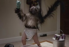 Puppy Monkey Baby Placed On Endangered Species List