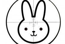 City of Fargo Debuts New Rabbit Bounty Program