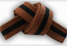 Twelve-Year Old Kung-Fu Brown-Belt Kicks Crap Out Of Would-Be Burglar